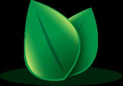 Environmental Friendly Corporation